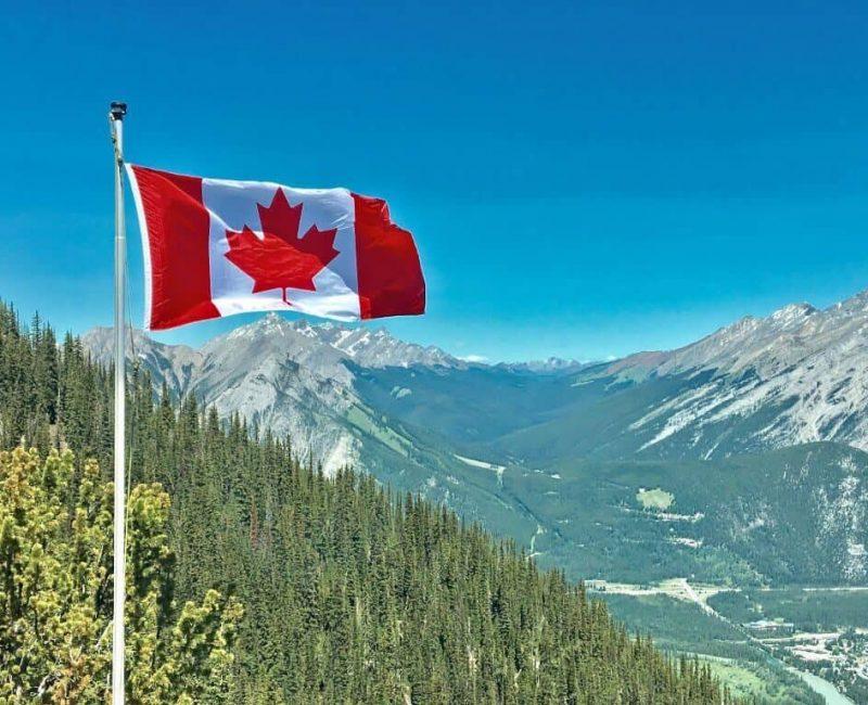 Cuenta comercial de emergencia de Canadá | Canadá offshore | Pearlem